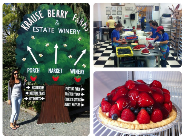 krause berry farm