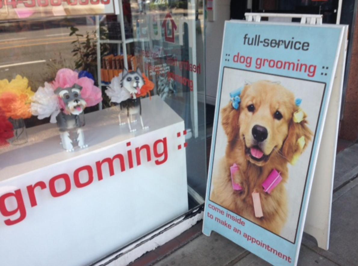 Kitsilano Dog Grooming