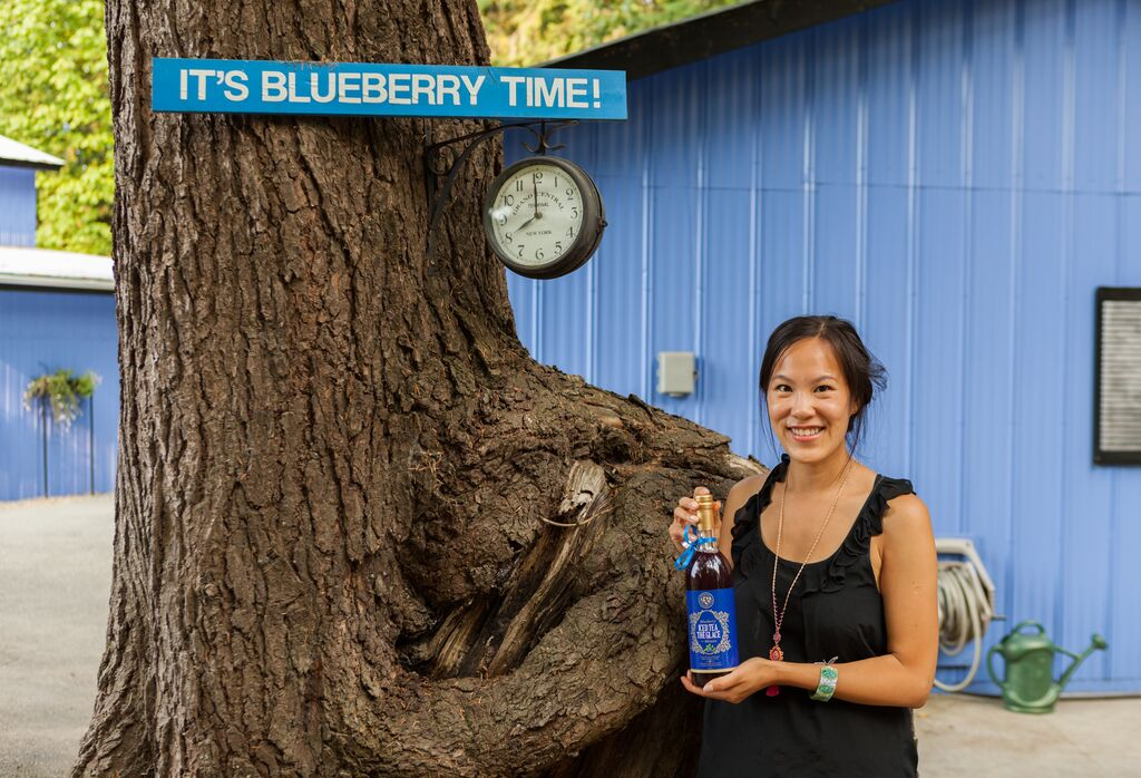 onnicks blueberry farm abbotsford 3