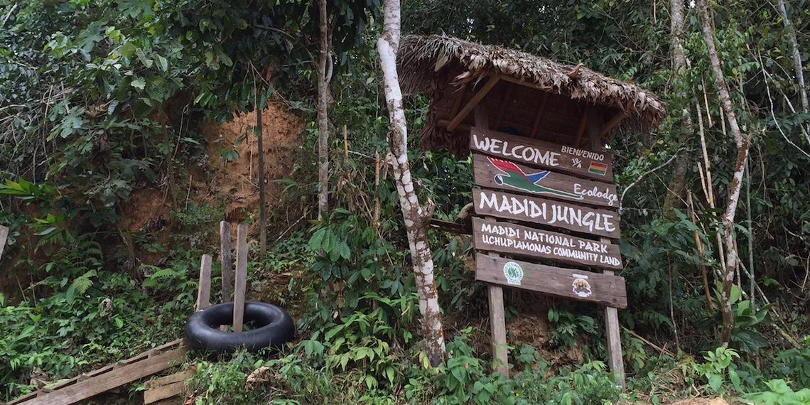 madidi jungle ecolodge tour 2