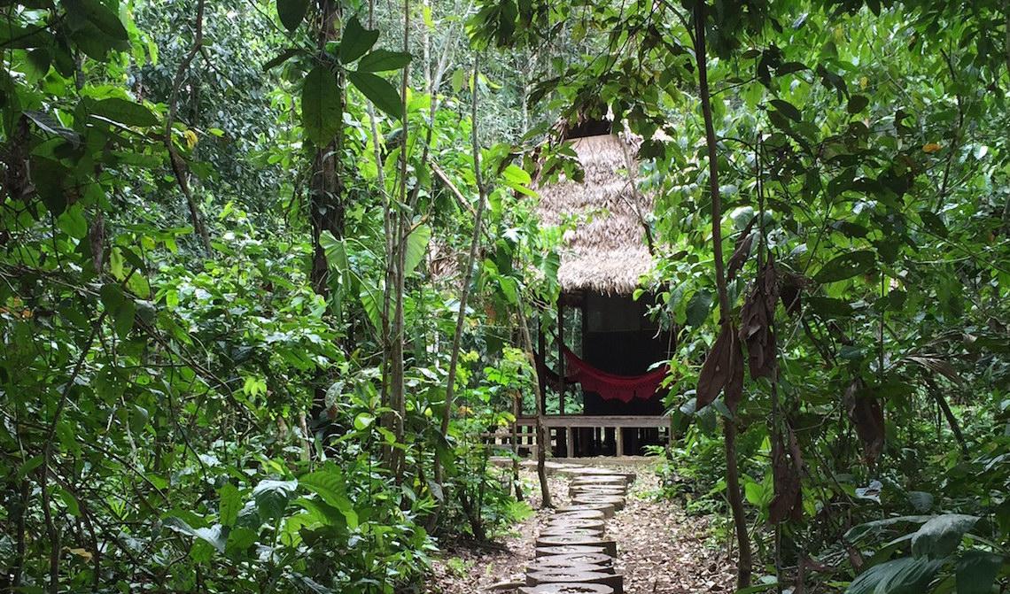 madidi jungle ecolodge