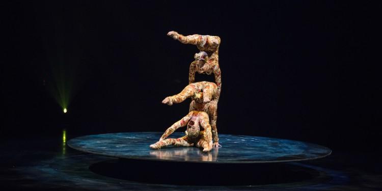 CIrque du Soleil KOOZA Contorsion