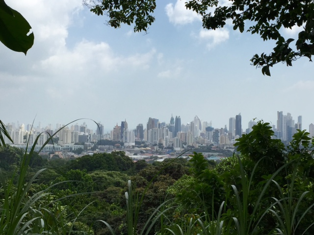 Parque Natural Metropolitano in Panama City 1
