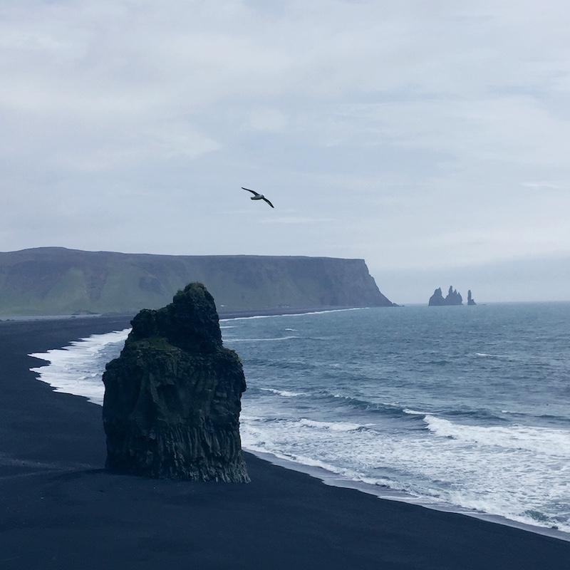 Vik South Iceland Black Sand Beach Photo 3