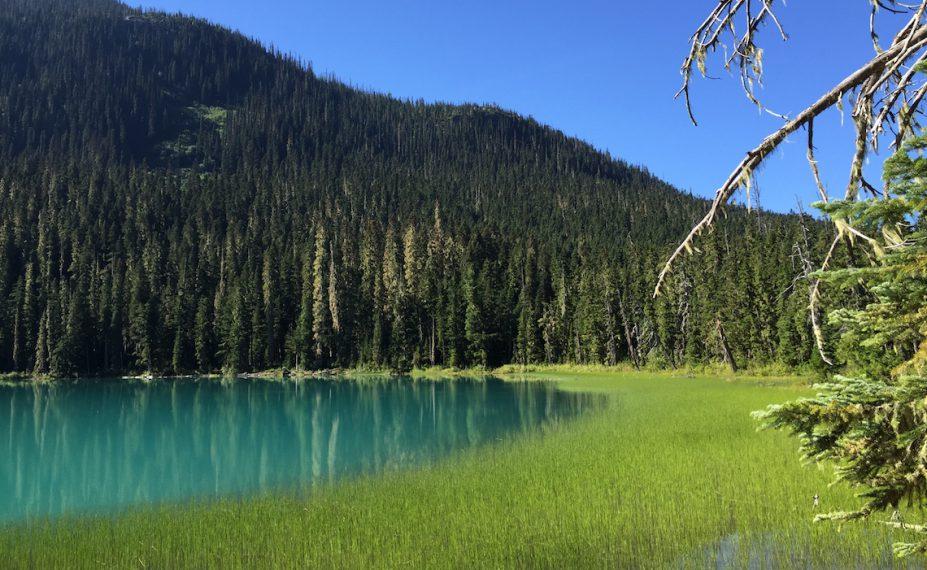 Joffre Lakes Hike Lower Lake