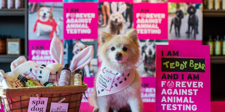 The Body Shop Animal Testing Petition