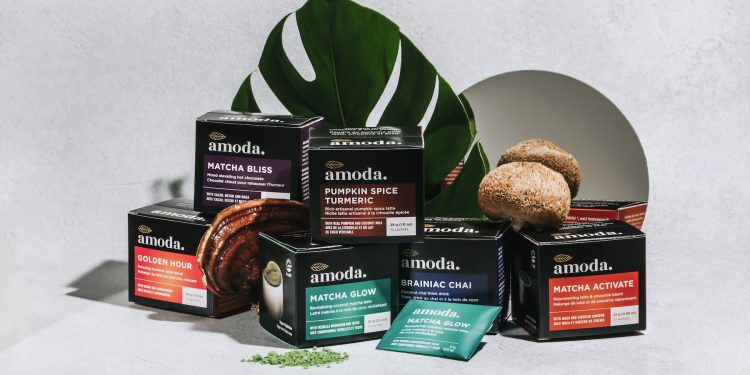 Amoda Superfood Lattes
