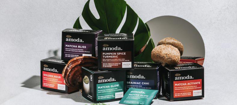 Amoda Superfood Lattes