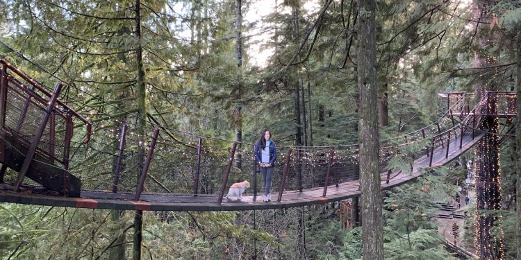 dog friendly capilano suspension bridge