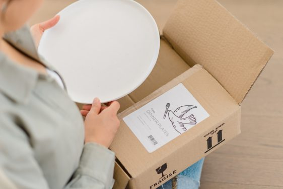 Unboxing Fable Dinner plates