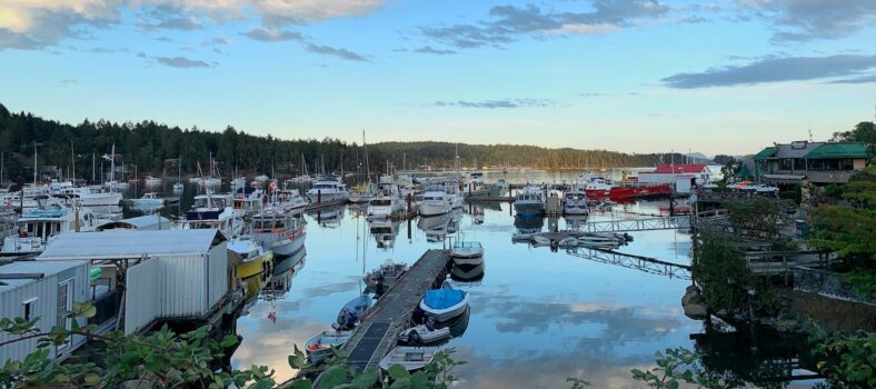 view of salt spring island ganges village and boats